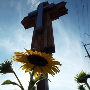 十字架の血潮に感謝