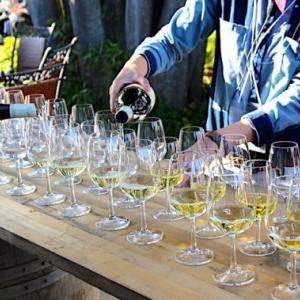 サンクゼールワインフェスタが楽しい!年に一度のワイン祭りをレポート