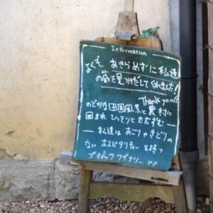 飲むべき日本ワインの筆頭格!「ドメイヌ・ソガ」が有名な小布施ワイナリーに行ってきた