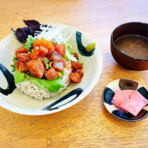伊良部島で多国籍料理!南国キッチン「ぱいんみ」がマジ美味【旦那執筆】
