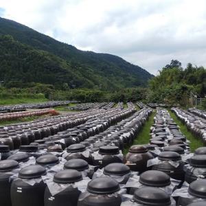 黒酢の郷桷志田(かくいだ)黒酢壺畑