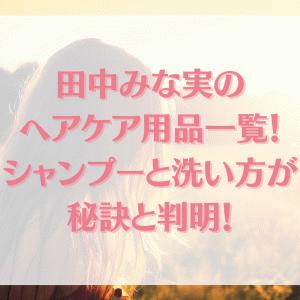 田中みな実のヘアケア用品一覧!シャンプーと洗い方が秘訣と判明!