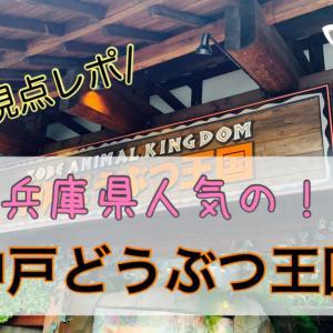兵庫県で人気!【神戸どうぶつ王国】に行ったら最高すぎたのでその感想とママ視点