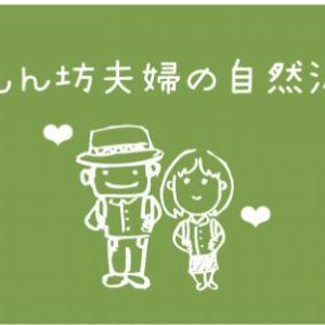 【双子ちゃん日記】双子育児には電動バウンサーが必要不可欠だった!