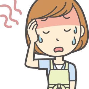 流産した話  (6w〜7w)  ① 風邪の症状と全く同じ