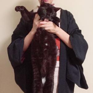 結城紬の暖かさを絶賛する