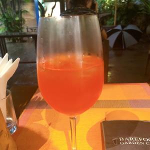 スリランカで飲んだ思い出のワインカクテル!ピンクフラミンゴ