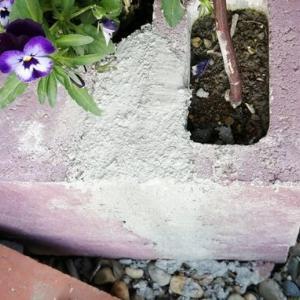 花壇の補修