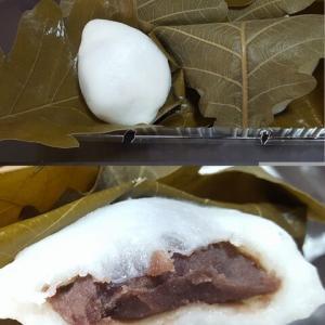 今年も東郷製菓の柏餅を食す