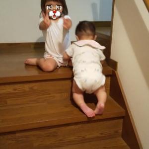 階段をのしのし登る