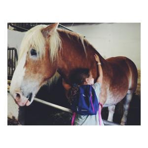 *香港*ディスカバリーベイのお馬さんと子供たち♡