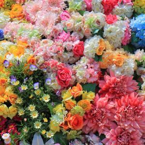 うみなか*はなまつり2019 花が彩る風景