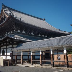 初夏を告げる京都の葵祭