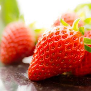 旬の味を食べ比べ!! 種類豊富なイチゴを堪能しよう!