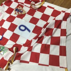 ワールドカップ欧州予選ストイコビッチ監督のセルビア、マケドニアが大健闘、クロアチアは?