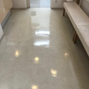 動物病院の床清掃