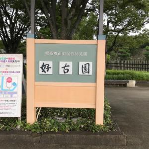 姫路散策①【好古園・姫路城】