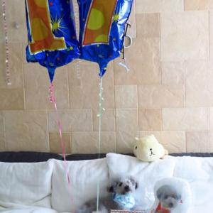 17歳お誕生日プレゼント