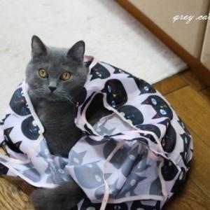 猫のエコバッグと義母・・・