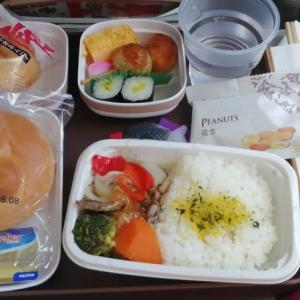 上海旅行記①~上海東方航空(JALコードシェア便)で上海へ出発