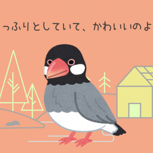 桜文鳥の桜ちゃん、逃げる!捕獲に成功したその方法とは