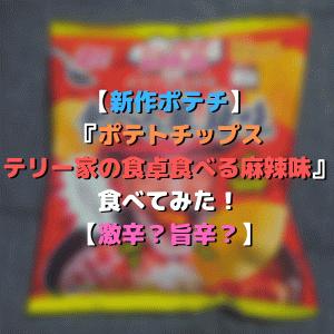 【新作ポテチ】『ポテトチップス テリー家の食卓食べる麻辣味』食べてみた!【激辛?旨辛?】