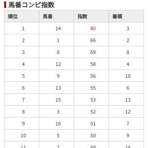 1/26 中央競馬(日刊コンピ)結果