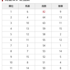 8/1 中央競馬(日刊コンピ)競馬