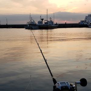 11月2日 清丸ウタセ真鯛釣り