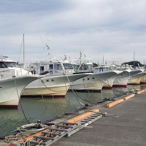 8月11日 タチウオ釣り