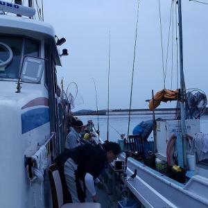 6月23日イサキ釣り