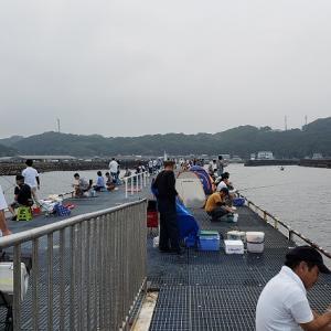 オクトパッシング IN 豊浜
