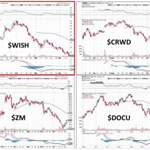 WISH株の失敗分析「高いところから落ちれば大きく下がる」「世間的に認められている企業が先に上がる」