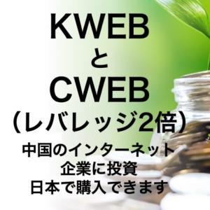 大暴落中のCWEB(中国IT株2倍)がチャンスだと思う☆【特定口座で購入可能なレバETF!】