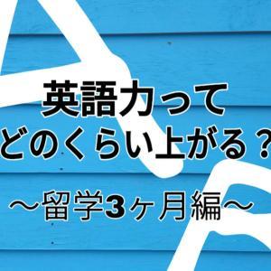 【3カ月目】英語力どのくらいついた?を ぶっちゃける by セブ留学