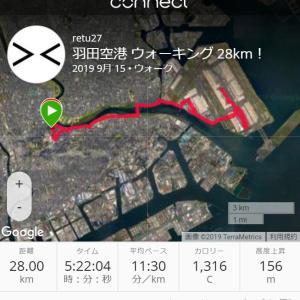 2日合計100kmウォーキング達成!今日は羽田空港&レインボーブリッジを歩きました!