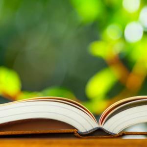 おすすめ小説の紹介!!筆者が2019年上半期に読んだ小説の中から印象に残っているものをランダムに5冊ピックアップ。