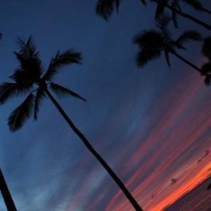【ハワイin2019】3日目:星空ツアー/その5(最終回):ノースショア/カエナ岬での星空観察