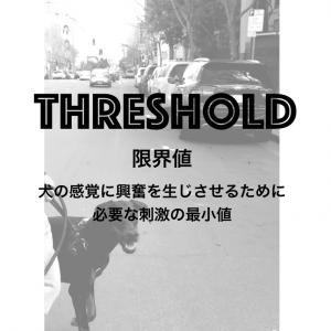 【Threshold】犬の学習が著しく低下する境界線、限界値。