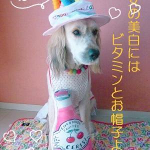 お誕生日の記念写真