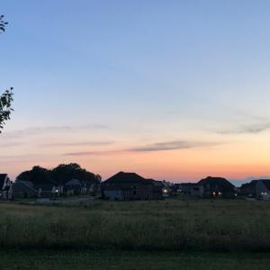 ピンク色の空と公園で見かけるもの