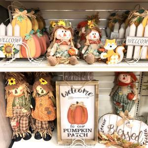 お店をぶらぶら秋の物いろいろ