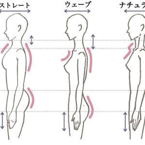 着物のための骨格診断士養成講座 修了