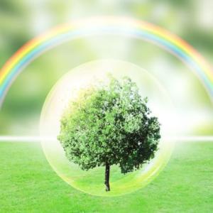 企業のISO14001 環境対策こぼれ話