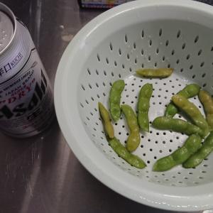 枝豆 湯上がり娘&黒ひかり 失敗と試し収穫