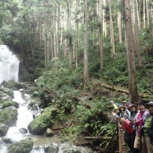 西大台ケ原散策予定が変更して吉野山散策