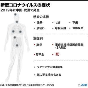 新型コロナウィルス肺炎を考える