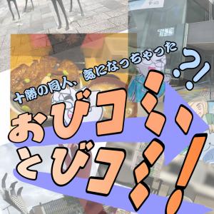 【イベント反省会】みんなでおびコミへ行こう!行程大紹介!!