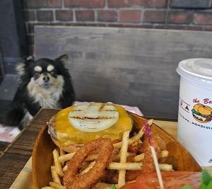 犬ダメな食べ物13品目。あげてはいけない危険な食べ物一覧。写真解説付き!