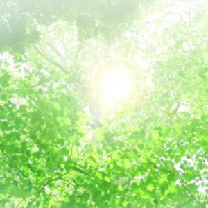 断捨離視点で過去を振り返る  私と身体 ①「苦しい」からの脱出法 俯瞰 つづき
